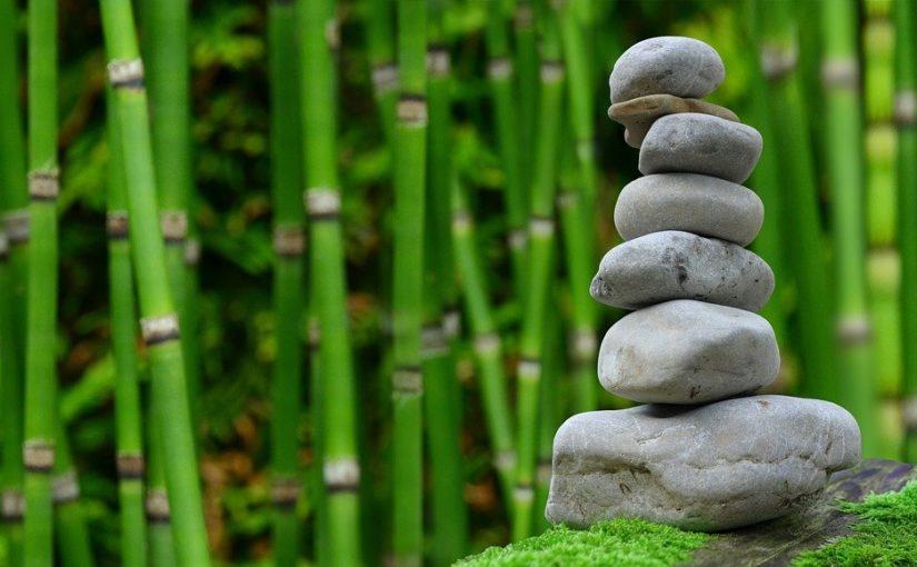 Ładny ,a także estetyczny ogród to zasługa wielu godzin spędzonych  w jego zaciszu w trakcie jego pielegnacji.